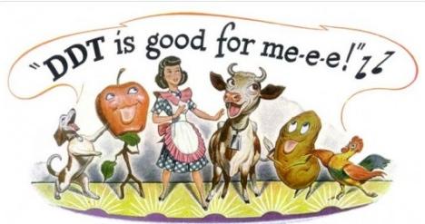 ddt_good_for_me