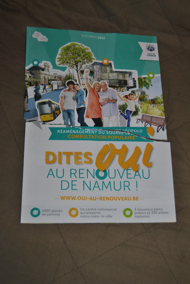 En grand, le renouveau de Namur. En plus petit, l'issue de la consultation.